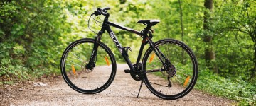 bicycle-bike-forest-100582